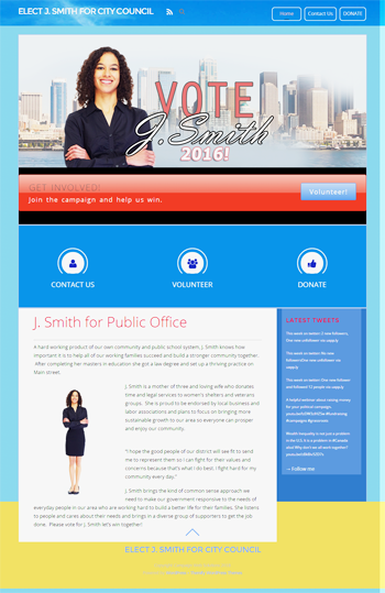 professional campaign websites